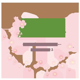 5周年記念お得なキャンペーン!!(4月23日まで)